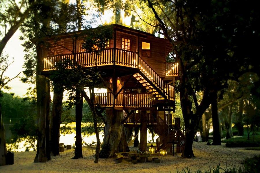 Luscious loves treehouses for Brazilian house music