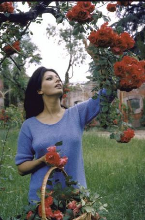 Sophia Loren, 1964, at the Italian Villa she shared with producer Carlo Ponti