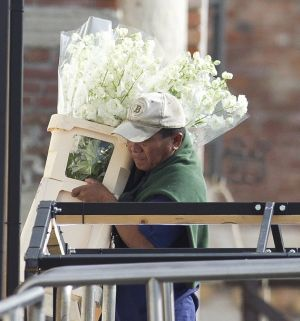 George and Amal wedding - Workers could be seen hauling in vast bouquets of ivory flowers.jpg
