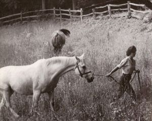 jackie bouvier kennedy onassis in the fields with horses.jpg