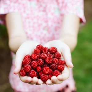 Inspired by a healthy life - Luscious berries for a healthy life.jpg