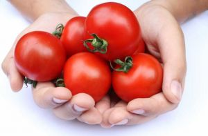 PHOTOS Wednesday Weight blog series - A healthy life - tomatoes.jpg