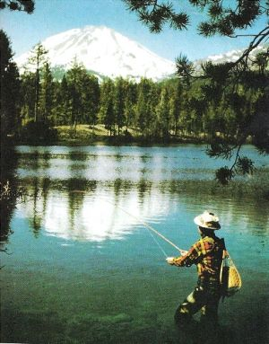 Wednesday Weight blog series - A healthy life - vintage-fly-fishing-man-.jpg