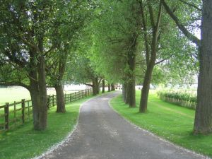 Driveways and entrances - www.myLusciousLife.com - Driveway_to_Nolands_Farm.jpg