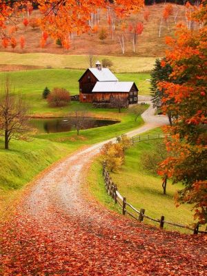 Driveways and entrances - www.myLusciousLife.com - american fall - driveway - barn house.jpg