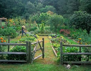Countryliving.com - Connecticut Kitchen Garden - Pamela Page.jpg