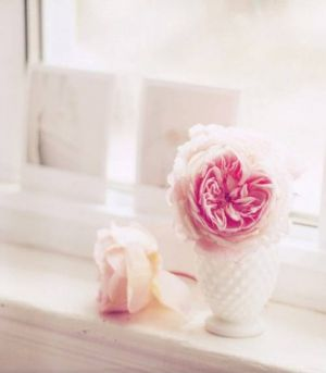 pink peony in white vase - Living lusciously.jpg