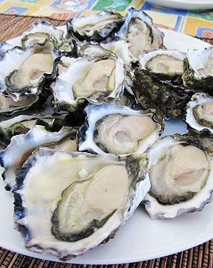 Family-Christmas-Lunch-2010_Wallis-Lake-Sydney-Rock-Oysters.jpg