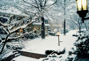A White Christmas with Luscious - mylusciouslife.com - white snow christmas outdoors.jpg
