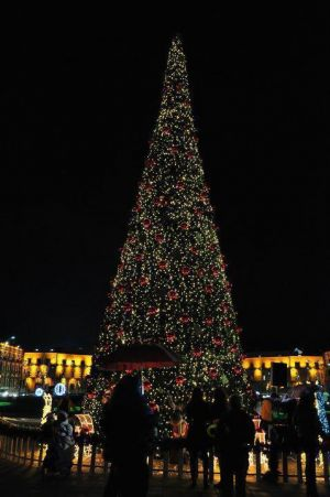 Christmas trees - mylusciouslife.com - christmas tree in city.jpg