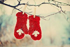 Merry Christmas from Luscious - mylusciouslife.com - christmas mittens in the snow.jpg