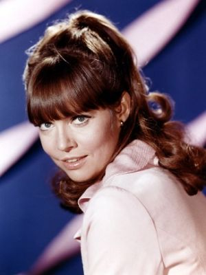 TV show fashion history - Get Smart - Barbara Feldon with long hair.jpg