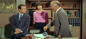 TV show fashion history - Get Smart with the Chief.jpg