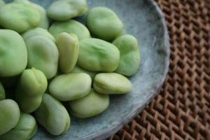 The colour green - myLusciousLife.com - Broad beans after cooking.jpg