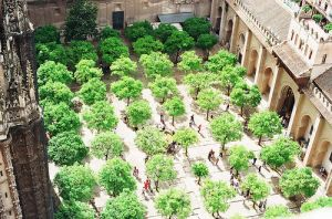 The colour green - myLusciousLife.com - courtyard of green trees.jpg