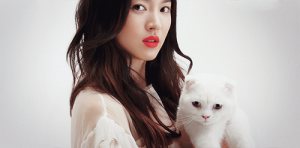 Song Hye Gyo with cat.png
