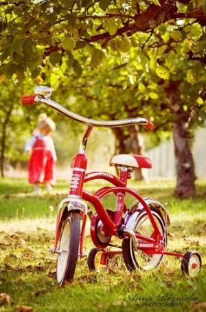 Pictures of Luscious red - Bicycle.JPG