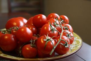 Pictures of red - luscious tomatoes.jpg
