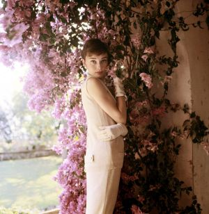 Photos of Audrey Hepburn - AUDREY - Hollywood icon.JPG