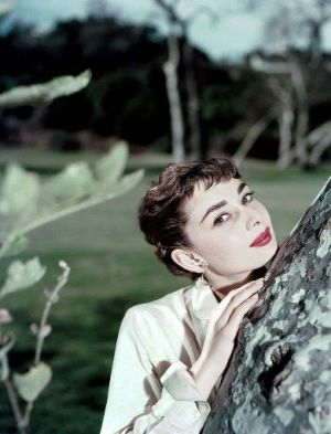 Photos of Audrey Hepburn - Audrey Hepburn fashion icon.jpg